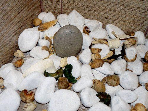 aranjament-cu-pietre